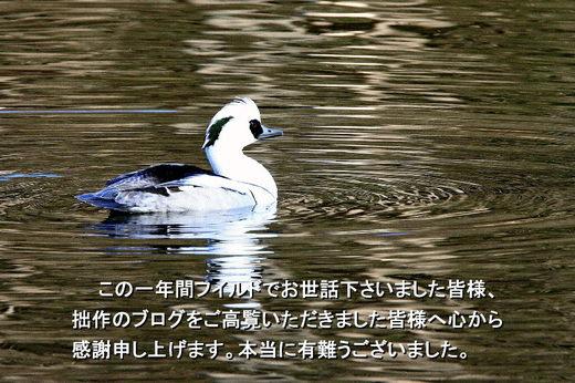 20091230_085143046