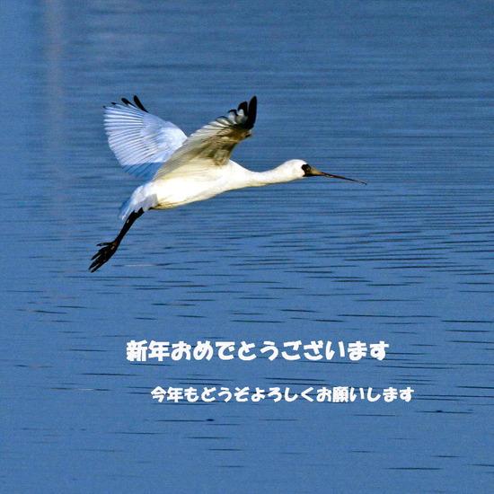 20120101_122040031