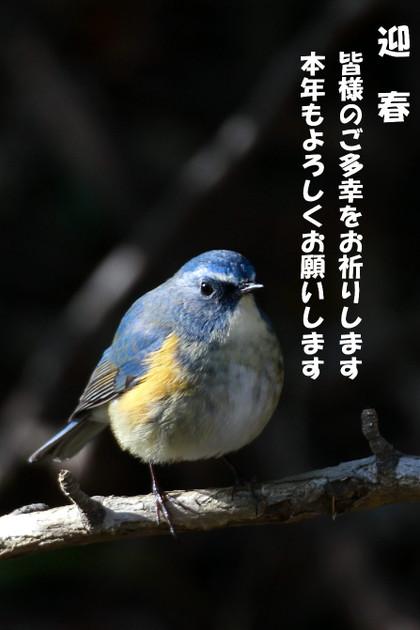 20130103_184207375