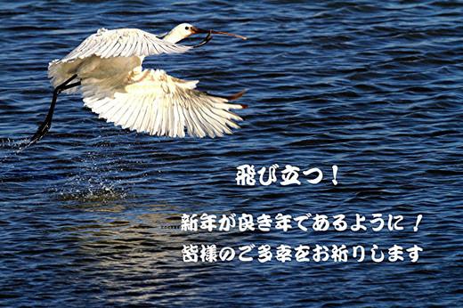 20140101_112812843_2